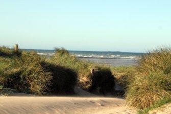 dunas en la playa