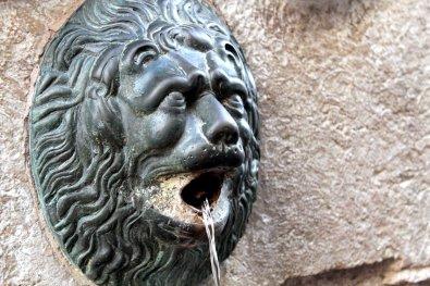 leon fuente