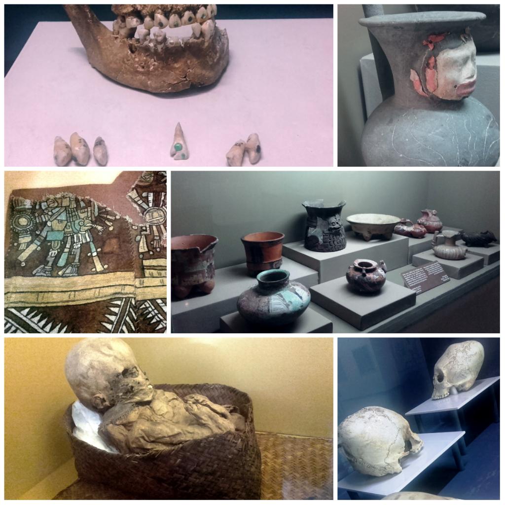 Museos_Tuxla