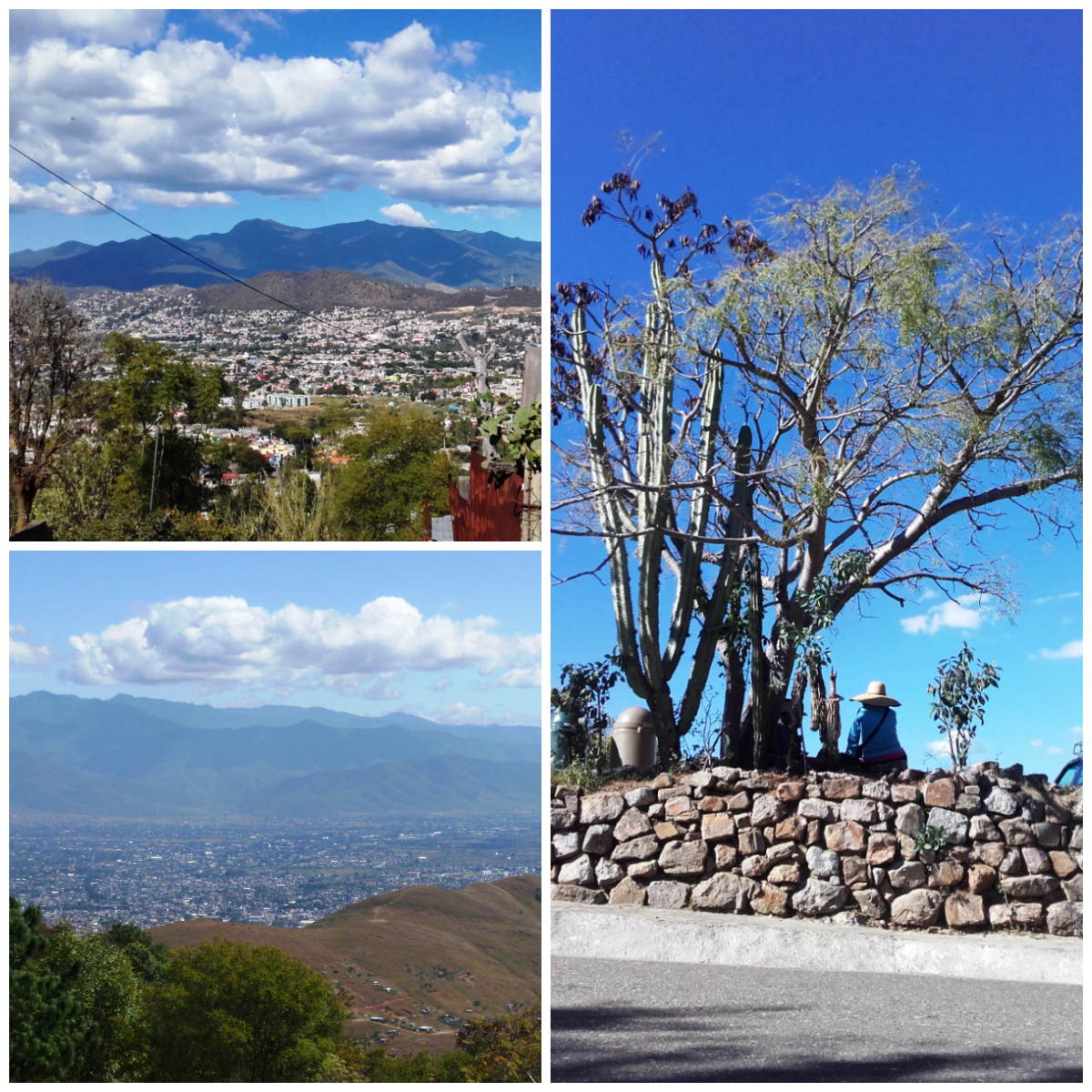 paisaje Oaxaca